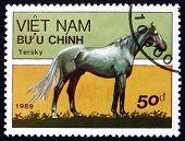 Postage Stamp Vietnam 1989 Tersk Horse