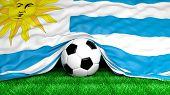 Soccer ball with Uruguayan flag on football field closeup