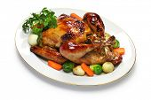 picture of turkey dinner  - homemade roast turkey - JPG