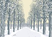 Prospect of an alley with snowy trees silhouettes in a park. Vector illustration