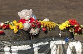foto of killing  - teddy bear and flowers brought in memory of those killed in the Euromaidan - JPG