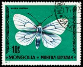 Vintage  Postage Stamp. Aporia Crataegi.