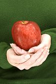 Red Delicious Apple In Woman's Hands