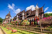 pic of mole  - Wat Lok Molee - JPG