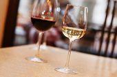 Wine tasting in bar