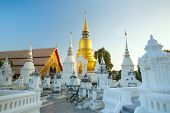The golden pagoda at Wat Suan Dok temple in Chiang Mai, Thailand