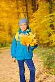 Positive boy with bunch of yellow maple leaves