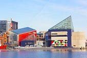 Baltimore Inner Harbor landmarks in winter