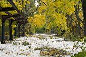 Old Putnam Trail In Van Cortlandt Park