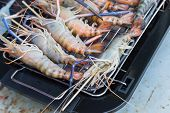 Prawns Are Grilled On The Electric  Barbecue Grill