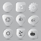 Nature set. Vector glass buttons.