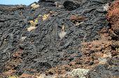 Dry Lava Texture