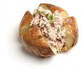 Jacket potato with tuna mayonnaise