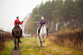 stock photo of horse girl  - Young woman riding a horse - JPG