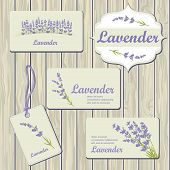 stock photo of lavender plant  - Lavender cards and labels on wood plank background - JPG