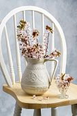 image of edwardian  - Antique jug filled with spring blossom on chair - JPG