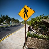 pic of pedestrian crossing  - Pedestrian crossing sign on tropical street road - JPG