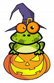 Frog With A Witch Hat In Pumpkin