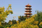 Tempel, pagode in Australië