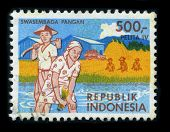 INDONESIA - CIRCA 1980: A stamp printed in INDONESIA shows image of the dedicated to the Rice is the seed of the monocot plant Oryza sativa, circa 1980.