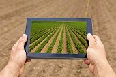 Smart Agriculture. Farmer Using Tablet Soy Planting. Modern Agriculture Concept. poster