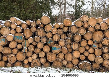 Close Up Of Cut Logs