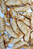 pot stickers. Chinese pot stickers. dim sum pot stickers for lunch or a snack. poster
