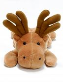 image of stuffed animals  - Stuffed moose toy on a white background - JPG