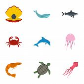 Water Wildlife Icons Set. Flat Set Of 9 Water Wildlife Icons For Web Isolated On White Background poster