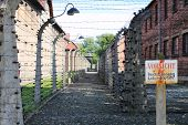 stock photo of auschwitz  - Barbed wire electrical fence at Auschwitz concentration camp Poland - JPG