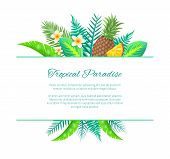 Tropical Paradise Summer Banner, Vector Placard Sample. Whole And Sliced Pineapple And Exotic Flower poster