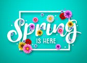 Spring Vector Banner Design. Spring Text With Colorful Chrysanthemum And Daisy Flowers In White Fram poster