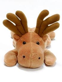 image of stuffed animals  - Stuffed moose toy on a white background - JPG