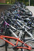 Iowa City Bicycles