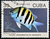 CUBA - CIRCA 1992
