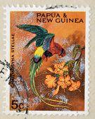 PAPUA NEW GUINEA - CIRCA 1990: A stamp printed in Papua shows bird charmosyna stellae circa 1990