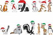 Christmas Animals Collection