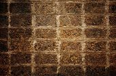 stock photo of tora  - The old Laterite wall  - JPG