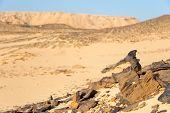 Formações nas rochas do deserto
