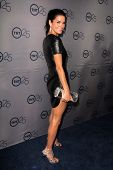 LOS ANGELES - JUL 24:  Angie Harmon arrives at TNT's 25th Anniversary Party at the Beverly Hilton Ho