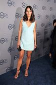 LOS ANGELES - JUL-24: Jordana Brewster kommt auf TNT 25th Anniversary Party bei den Beverly Hilto