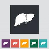Liver Icon.