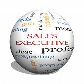 Sales Executive 3D Sphere Word Cloud Concept
