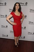 Nigella Lawson at the Disney ABC Television Group 2013 TCA Winter Press Tour, Langham Huntington Hotel, Pasadena, CA 01-10-13