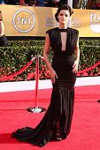 Jaime Alexander at the 19th Annual Screen Actors Guild Awards Arrivals, Shrine Auditorium, Los Angel