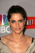 PASADENA - JULY 22: Amanda Peet at the NBC TCA Press Tour at Ritz Carlton Huntington Hotel on July 2