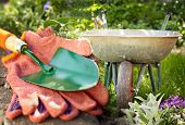 foto of trowel  - Garden equipment standing ready in the garden to cultivate the flowers with a pair of gardening gloves and small green metal trowel in the foreground and galvanised wheelbarrow behind - JPG