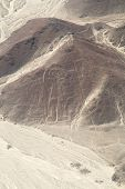 Geoglyphs of Nazca - Astronaut
