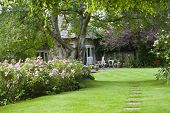 pic of stepping stones  - Country cottage garden with stepping stones leading to a small patio - JPG