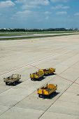 The Yellow Trucks Wait For Loading In The Platform Of Airport